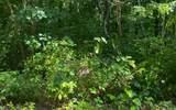 Trailwood Dr Lot 164 - Photo 1