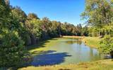 335 Bella Lago Cove - Photo 7