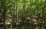 LT 12 Ross Ridge - Photo 1