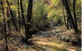 37+AC Mountaintown Trail - Photo 6