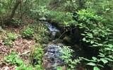 152 Hiawatha Trail - Photo 4