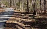 3.81A Flat Rock Gap Rd - Photo 1
