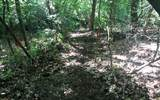 152 Hiawatha Trail - Photo 11