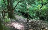 152 Hiawatha Trail - Photo 12