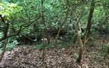 152 Hiawatha Trail - Photo 13
