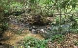 152 Hiawatha Trail - Photo 14