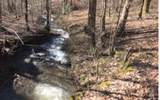 LOT 3 The Springs At Brook - Photo 1