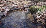 3.81A Flat Rock Gap Rd - Photo 2
