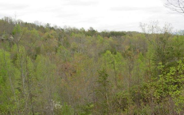 #9 Unit 7 Smokerise, Hayesville, NC 28904 (MLS #247082) :: RE/MAX Town & Country