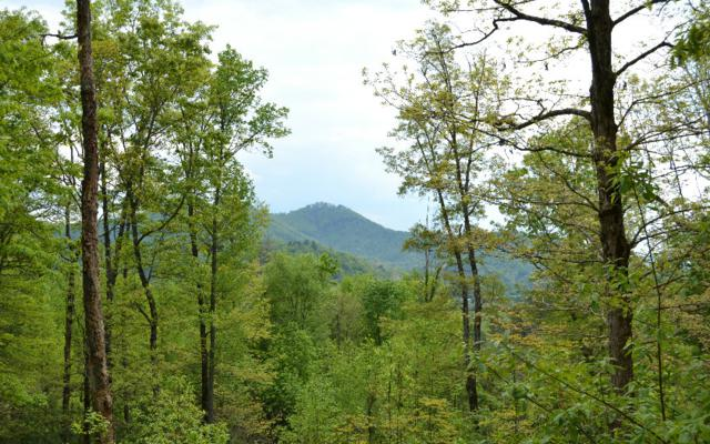 LT 17 Moore Acres, Hayesville, NC 28904 (MLS #247590) :: RE/MAX Town & Country