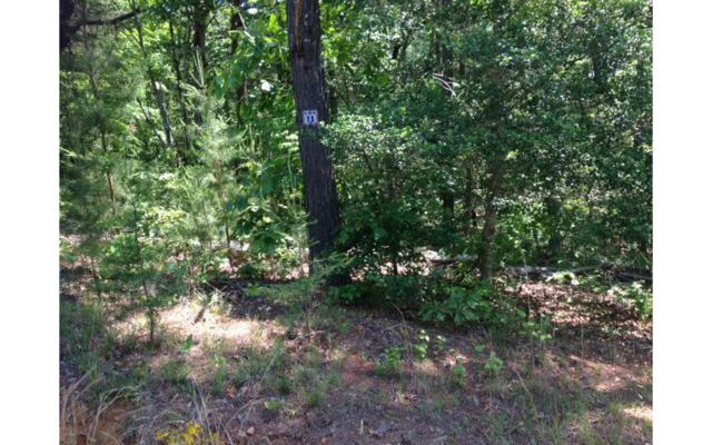 LOT11 Maple Springs, Blairsville, GA 30512 (MLS #248353) :: RE/MAX Town & Country
