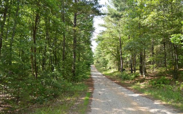 Cozy Cove Ldg Lot 1B, Blairsville, GA 30512 (MLS #249453) :: RE/MAX Town & Country