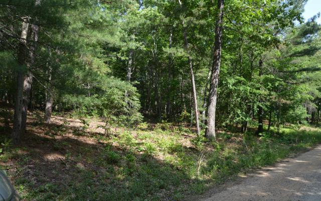Cozy Cove Ldg Lot 4, Blairsville, GA 30512 (MLS #249457) :: RE/MAX Town & Country