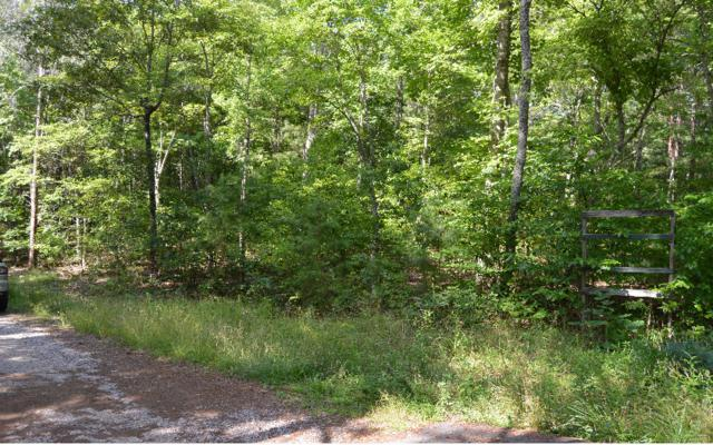 Cozy Cove Ldg Lot 7, Blairsville, GA 30512 (MLS #249460) :: RE/MAX Town & Country