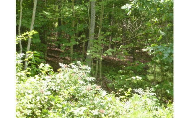 Oakwood Estates, Murphy, NC 28906 (MLS #250186) :: RE/MAX Town & Country