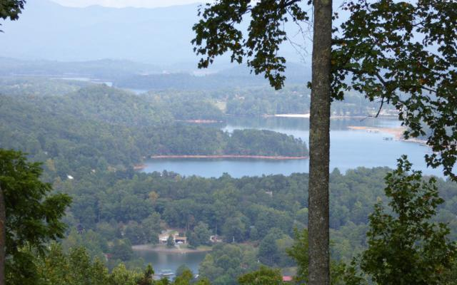 LT1 Ivy Mountain, Hiawassee, GA 30546 (MLS #251651) :: RE/MAX Town & Country