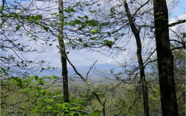 LOT20 Rooks Road, Mineral Bluff, GA 30559 (MLS #251783) :: RE/MAX Town & Country