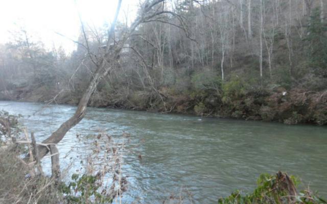 LT16 River Lane, Ellijay, GA 30536 (MLS #254055) :: RE/MAX Town & Country