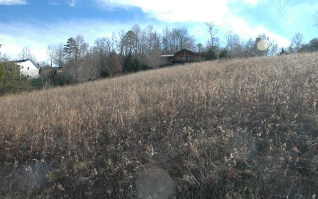LOT8 Hillside Terrace, Warne, NC 28909 (MLS #254088) :: RE/MAX Town & Country