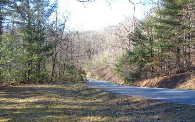 LT 40 Double Knobs, Hayesville, NC 28904 (MLS #254381) :: RE/MAX Town & Country