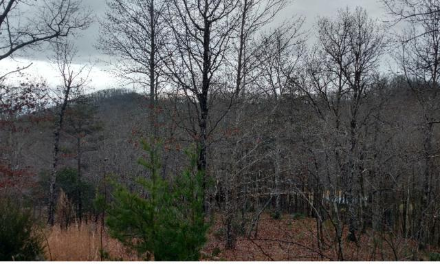 LT 9 Glen Oaks, Hayesville, NC 28904 (MLS #254430) :: RE/MAX Town & Country