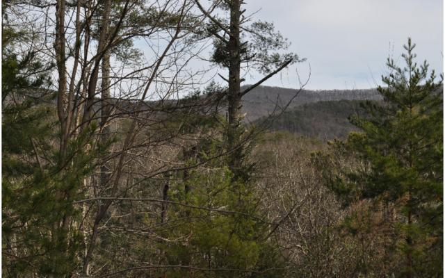 LT 8 Crockett Mountain, Cherry Log, GA 30522 (MLS #254521) :: RE/MAX Town & Country