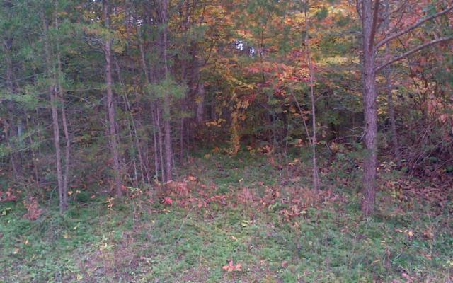LOT13 Old Brasstown Estate, Young Harris, GA 30582 (MLS #254733) :: RE/MAX Town & Country
