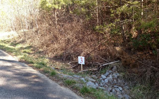 L-3 Ridgeline Estates, Ducktown, TN 37326 (MLS #254833) :: RE/MAX Town & Country