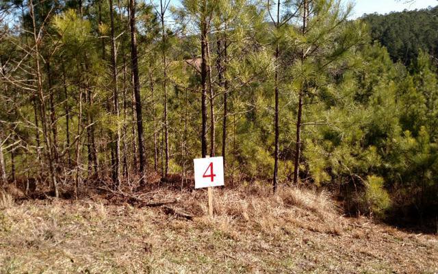 L-4 Ridgeline Estates, Ducktown, TN 37326 (MLS #254835) :: RE/MAX Town & Country