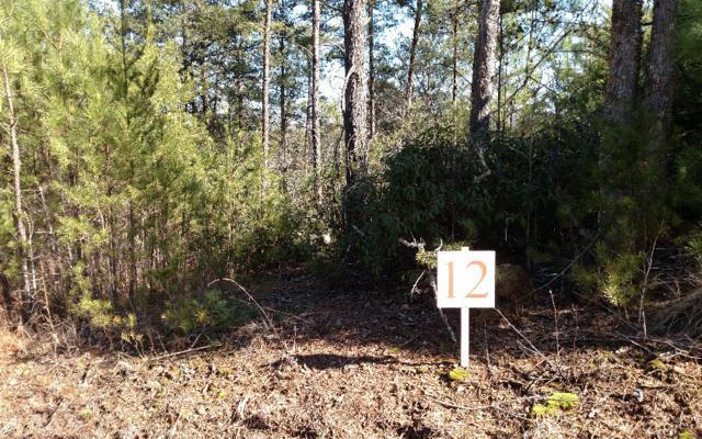 L-12 Ridgeline Estates, Ducktown, TN 37326 (MLS #254836) :: RE/MAX Town & Country