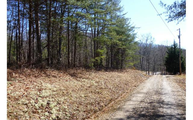 Wolf Ridge Lane, Murphy, NC 28906 (MLS #255248) :: RE/MAX Town & Country