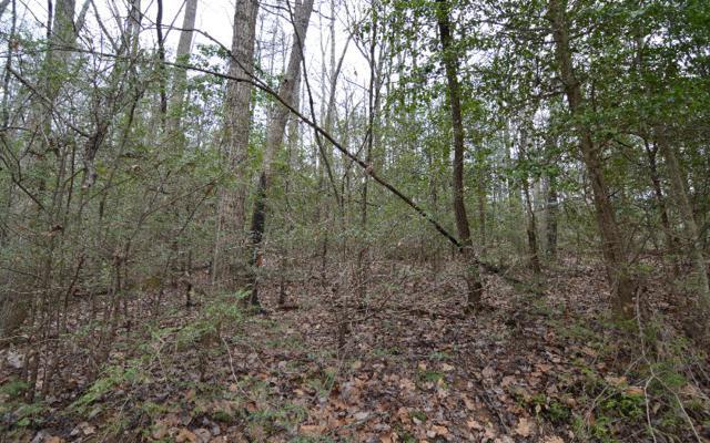LT X7 Hidden Lake, Blairsville, GA 30512 (MLS #255414) :: RE/MAX Town & Country