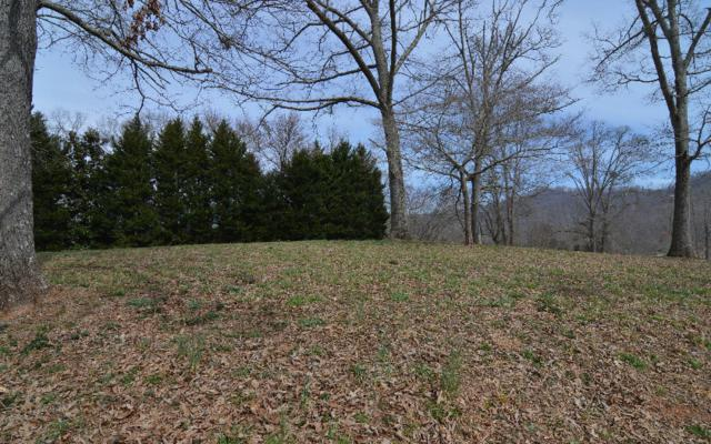 LOT 6 Meadows At Chatuge, Hayesville, NC 28904 (MLS #255622) :: RE/MAX Town & Country