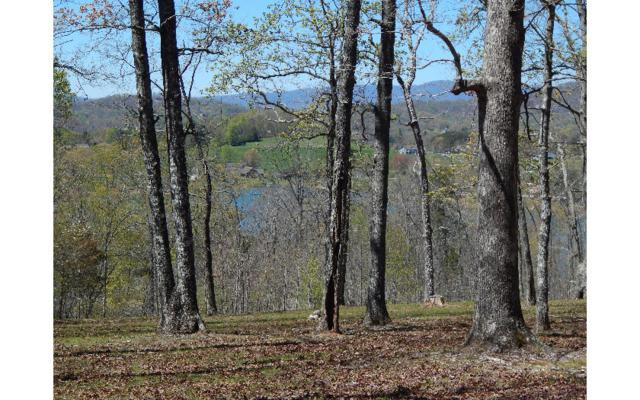 LOT 9 Drake Ridge, Hayesville, NC 28904 (MLS #255654) :: RE/MAX Town & Country