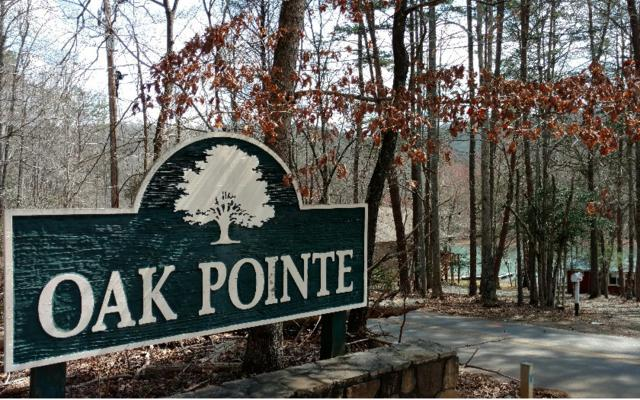 #5 Oak Pointe, Hiawassee, GA 30546 (MLS #255719) :: RE/MAX Town & Country