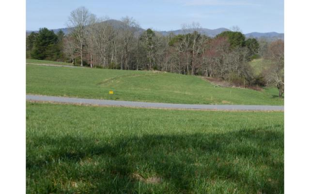 LOT 8 Mason Farm Road, Blairsville, GA 30512 (MLS #255833) :: RE/MAX Town & Country
