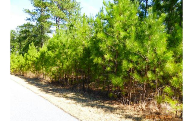 LT50 Loftis Mountain Way, Blairsville, GA 30512 (MLS #256029) :: RE/MAX Town & Country