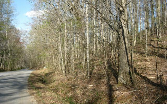24 Mining Gap Trail, Young Harris, GA 30582 (MLS #256414) :: RE/MAX Town & Country