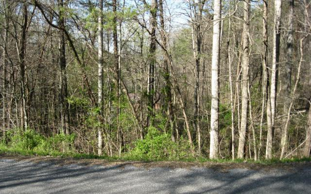 26 Mining Gap Trail, Young Harris, GA 30582 (MLS #256416) :: RE/MAX Town & Country