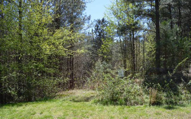 LT 46 Black Bear Ridge Rd, Ellijay, GA 30536 (MLS #256649) :: RE/MAX Town & Country