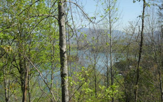 LOT 7 Celestial Way, Hiawassee, GA 30546 (MLS #256904) :: RE/MAX Town & Country