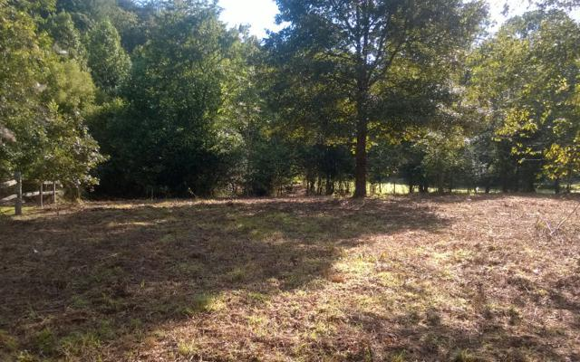 LOT 2 Gibbs Drive, Mineral Bluff, GA 30559 (MLS #257195) :: RE/MAX Town & Country