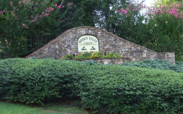 Hidden Valley Lakes, McCaysville, GA 30555 (MLS #257285) :: RE/MAX Town & Country