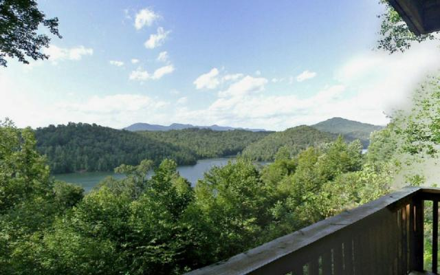 851 Wilderness Lake Circ, Murphy, NC 28906 (MLS #257358) :: RE/MAX Town & Country