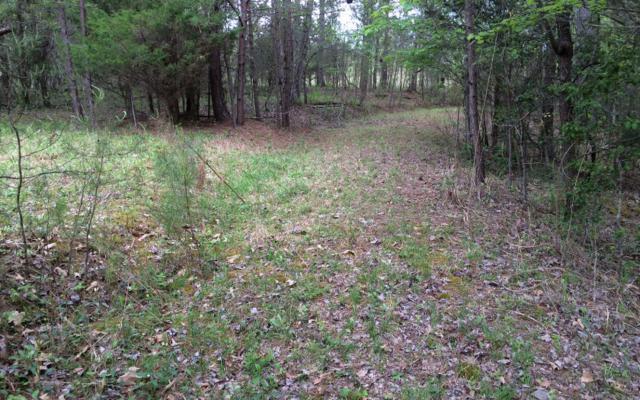 LOT16 Ivy Log Estates, Blairsville, GA 30512 (MLS #257415) :: RE/MAX Town & Country