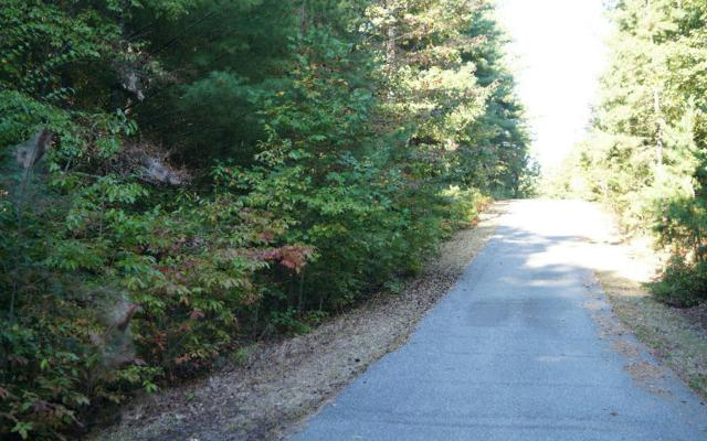 LOT 6 Enchanted Forest, Blairsville, GA 30512 (MLS #257771) :: RE/MAX Town & Country