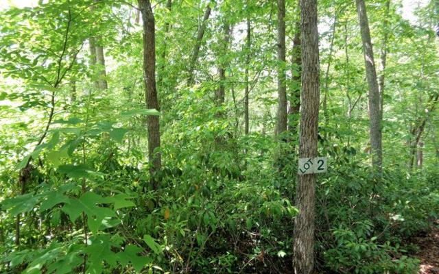 LOT 2 Shewbird Woods, Hayesville, NC 28904 (MLS #258159) :: RE/MAX Town & Country
