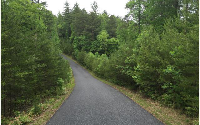 LT 14 Woodland Trails, Morganton, GA 30512 (MLS #258241) :: RE/MAX Town & Country