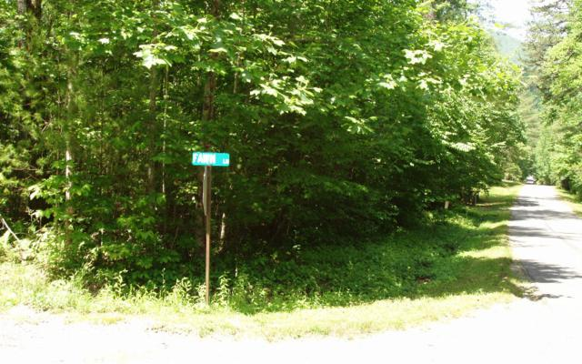 LOT26 Hi River, Hiawassee, GA 30546 (MLS #258319) :: Path & Post Real Estate