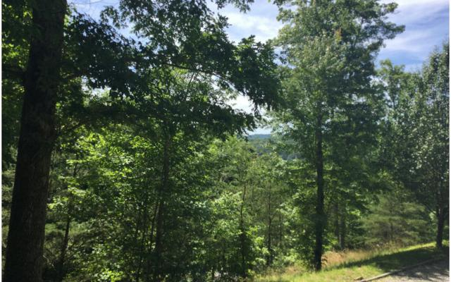 LT 16 Trackrock View, Blairsville, GA 30512 (MLS #258852) :: RE/MAX Town & Country